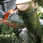 riparazione macchine giardinaggio