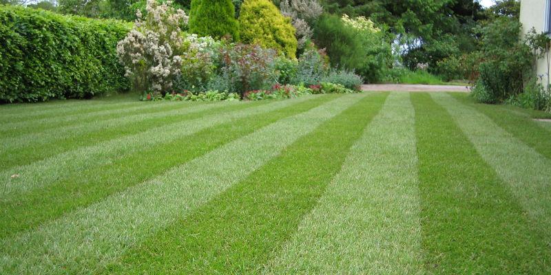 Manutenzione giardini milano e provincia for Manutenzione giardini