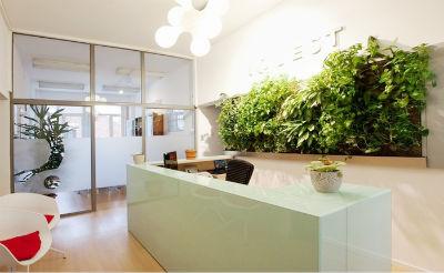 piante da ufficio milano