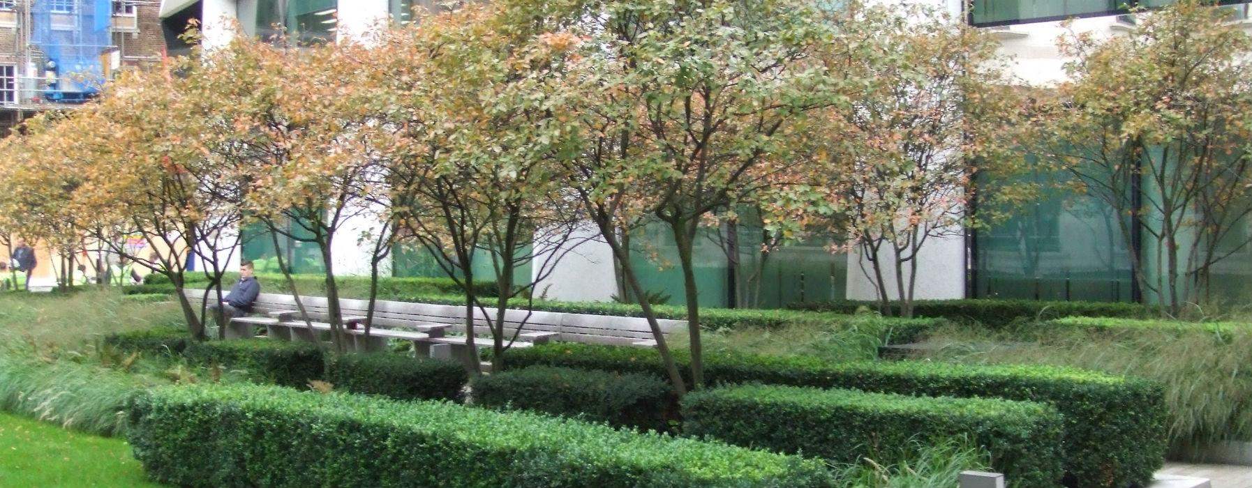 Manutenzione giardini condominiali progettazione e - Ufficio parchi e giardini milano ...