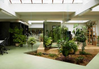 Giardini archivi progettazione e manutenzione giardini a - Ufficio parchi e giardini milano ...